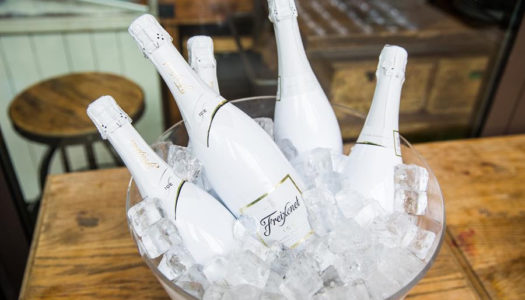 Freixenet ICE & Bucketfeet Sommerevent